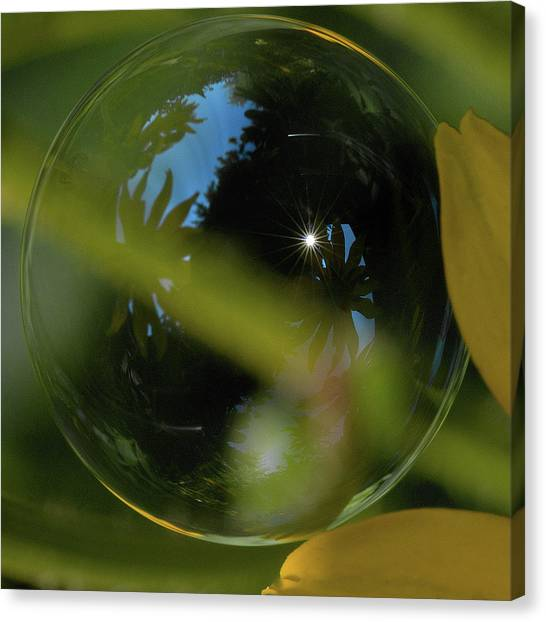 Bubble In The Garden Canvas Print