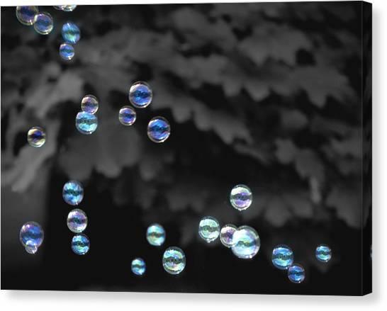 Bubbles Canvas Print by Elizabeth Reynders