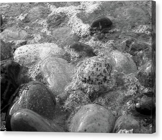 Bubbling Stones Canvas Print