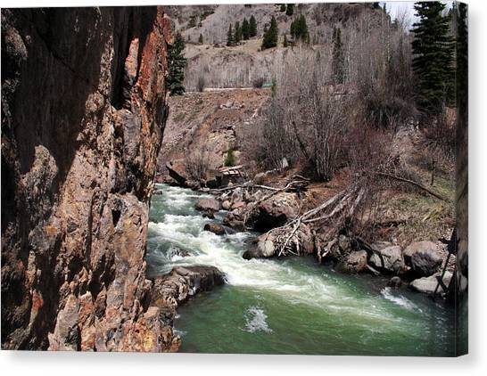 Buck In The Rapids Canvas Print