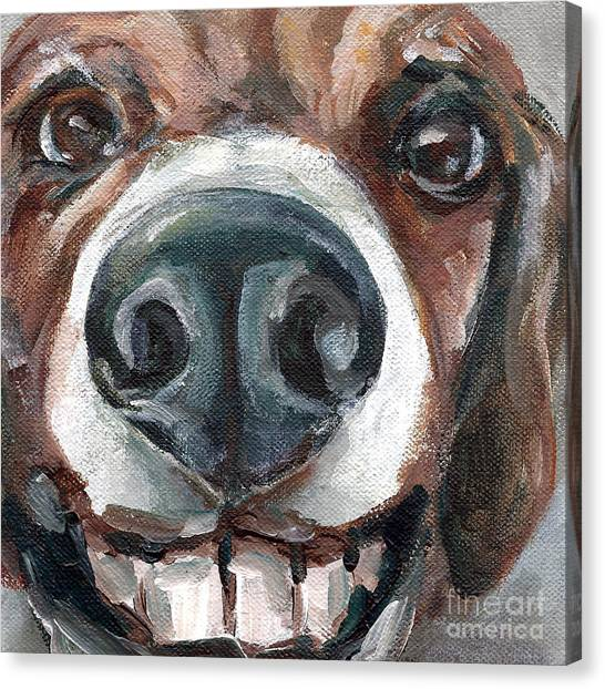 Buck-toothed Beagle Canvas Print by Linda Vespasian