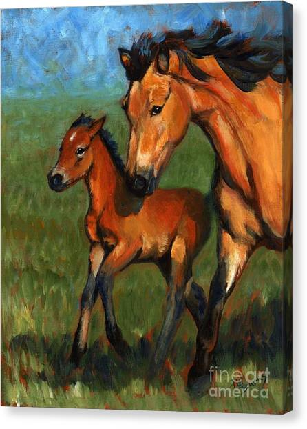 Buckskin And Baby Canvas Print