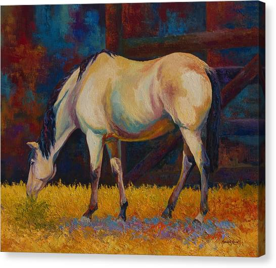 Rodeos Canvas Print - Buckskin by Marion Rose