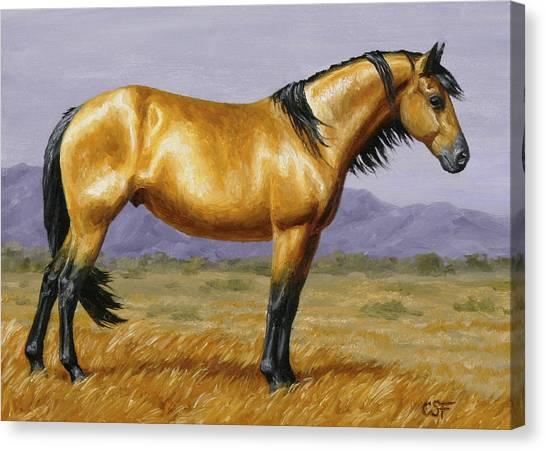 Wild Horse Canvas Print - Buckskin Mustang Stallion by Crista Forest