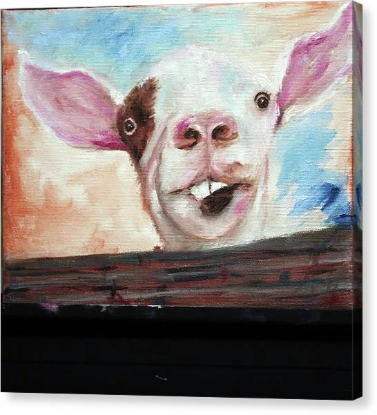 Bucktooth'd Goat Part Of Barnyard Series Canvas Print