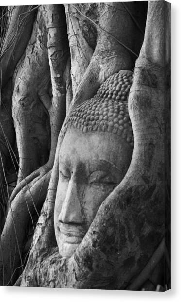 Buddha Head Canvas Print by Jessica Rose