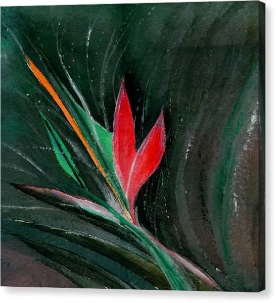 Budding Canvas Print