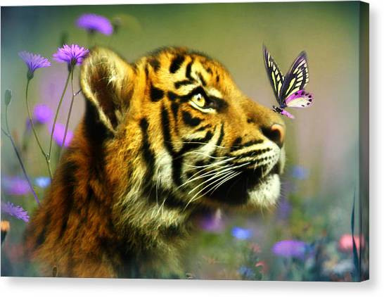 Buddy And The Butterfly Canvas Print