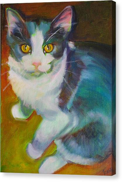 Buddy The Cat Canvas Print