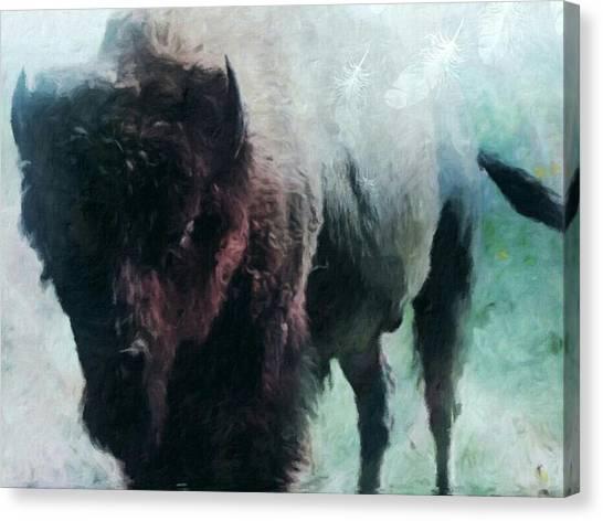 Buffalo American Bison Canvas Print