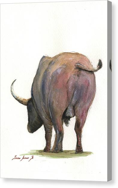 Back Canvas Print - Buffalo Back by Juan Bosco