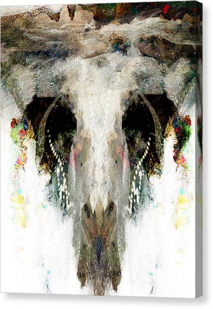 Buffalo Caves Canvas Print by James VerDoorn
