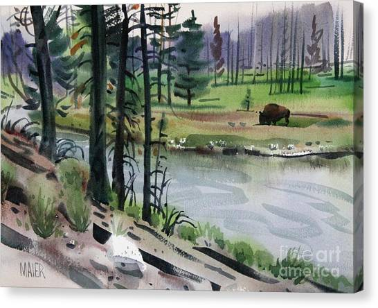 Yellowstone National Park Canvas Print - Buffalo In Yellowstone by Donald Maier