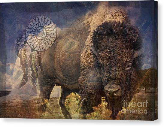 Buffalo Medicine 2015 Canvas Print