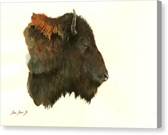 Buffaloes Canvas Print - Buffalo Portrait Head by Juan  Bosco
