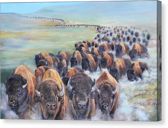 Buffalo Stampede Canvas Print
