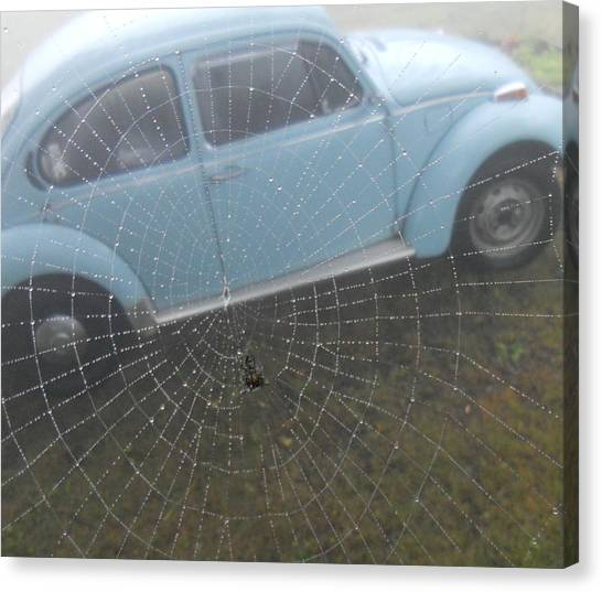 Bug In A Web Canvas Print