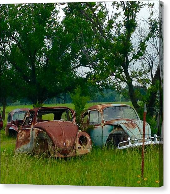 Volkswagen Bug Canvas Prints (Page #19 of 22) | Fine Art America