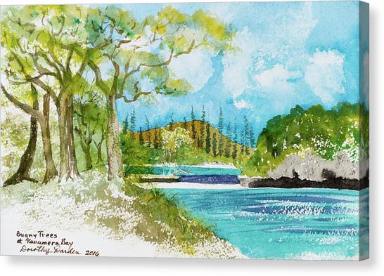 Bugny Trees At Kanumera Bay, Ile Des Pins Canvas Print