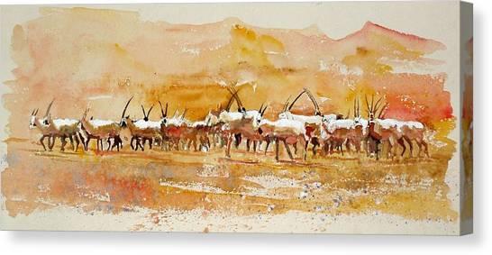 Buharan Oryx Canvas Print by Mike Shepley DA Edin