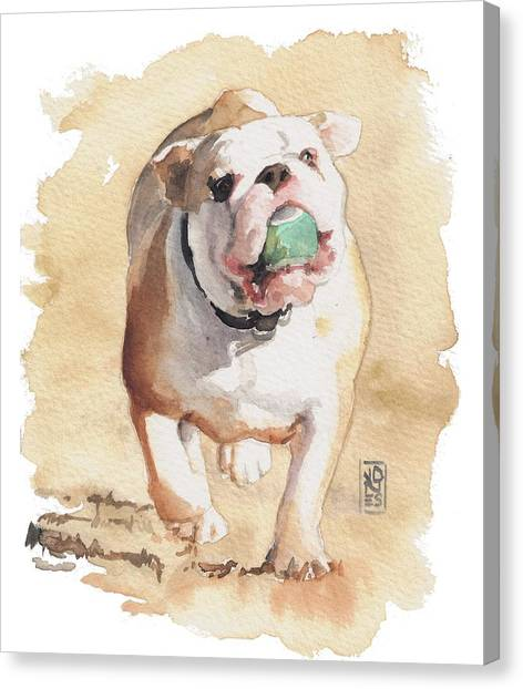 English Bull Dog Canvas Print - Bull And Ball by Debra Jones