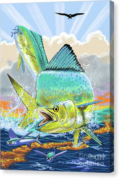 Spearfishing Canvas Print - Bull And Cow Mahi by Carey Chen