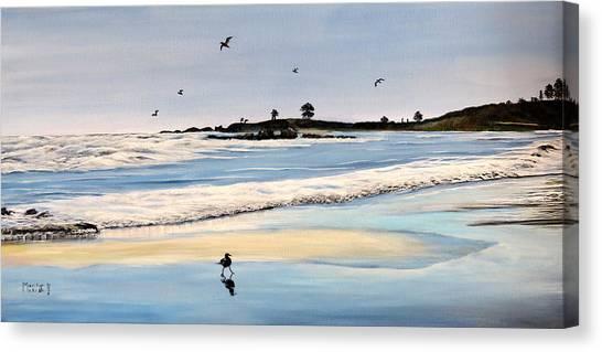 Bull Beach Canvas Print