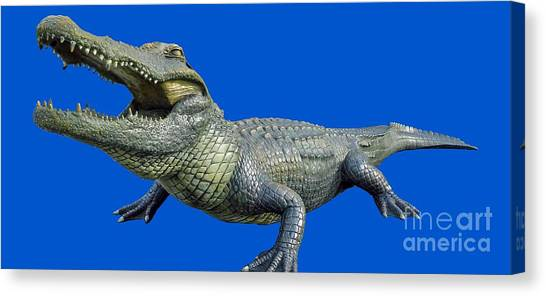 Bull Gator Transparent For T Shirts Canvas Print