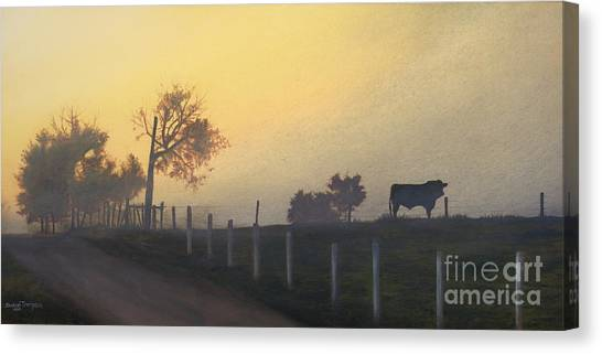 Bull In The Fog Canvas Print