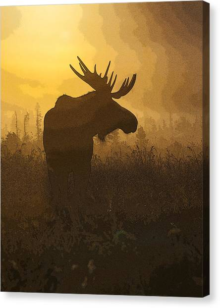 Moose Canvas Print - Bull Moose In Fog- Abstract by Tim Grams