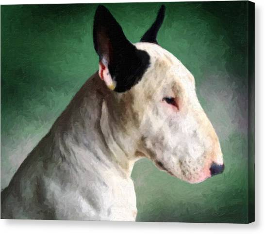 Bulls Canvas Print - Bull Terrier On Green by Michael Tompsett
