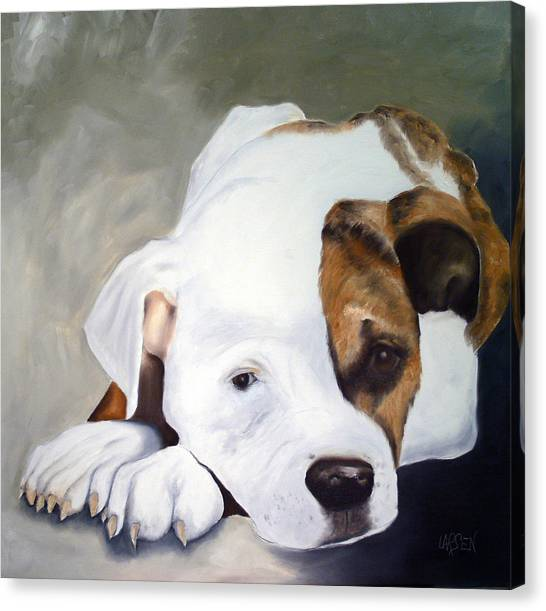 Bulldog Canvas Print by Dick Larsen