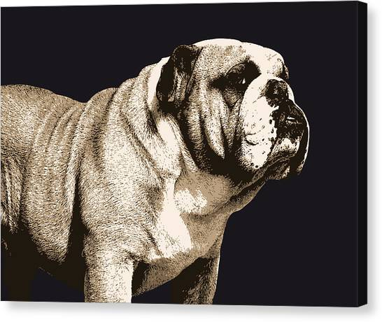 Breed Canvas Print - Bulldog Spirit by Michael Tompsett