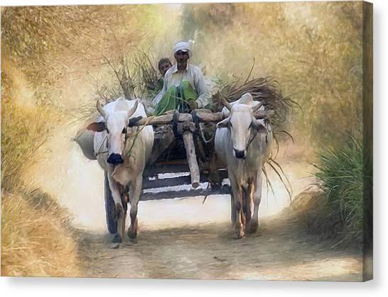 Bullock Cart Canvas Print by Shreeharsha Kulkarni