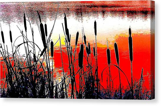 Bullrushes Against The Sunset Canvas Print