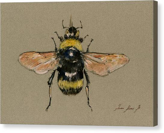 Bee Canvas Print - Bumble Bee Art Wall by Juan  Bosco