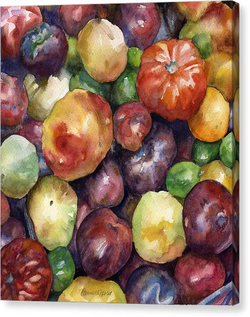Late Canvas Print - Bumper Crop Of Heirlooms by Anne Gifford