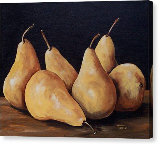 Bunch Of Bosc Pears  Canvas Print