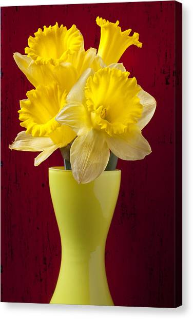 Daffodils Canvas Print - Bunch Of Daffodils by Garry Gay