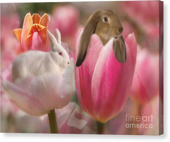 Bunny Blossoms Canvas Print