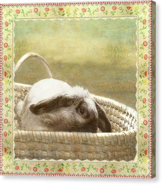 Bunny In Easter Basket Canvas Print