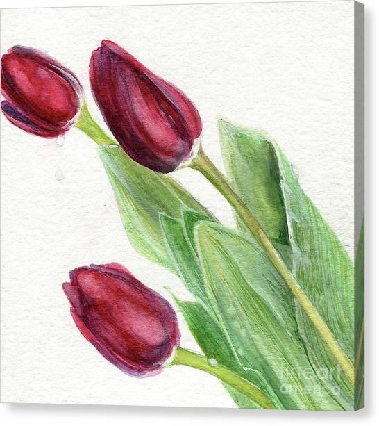 Burgundy Tulips Canvas Print
