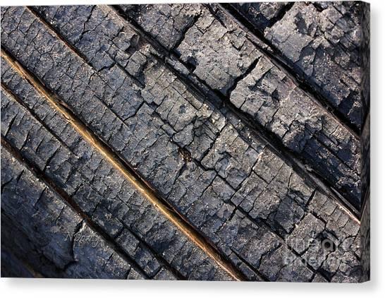 Burnt Bark Canvas Print