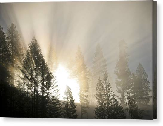 Burning Through The Fog Canvas Print