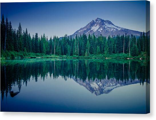 Burnt Lake Reflection Canvas Print