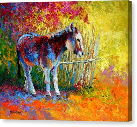 Donkeys Canvas Print - Burro And Bouganvillia by Marion Rose
