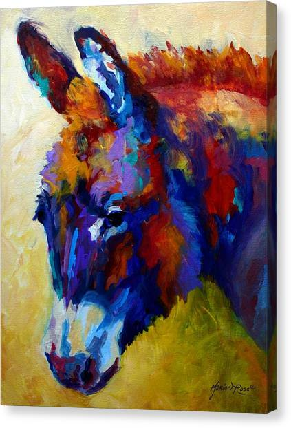 Donkeys Canvas Print - Burro II by Marion Rose