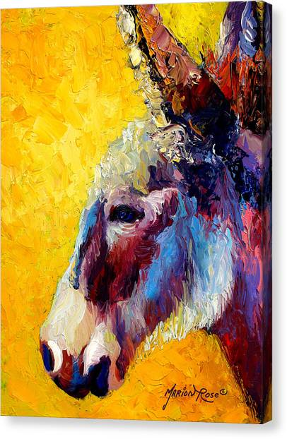Donkeys Canvas Print - Burro Study II by Marion Rose