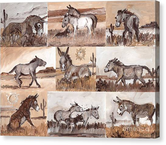 Burros Of The South West Sampler Canvas Print