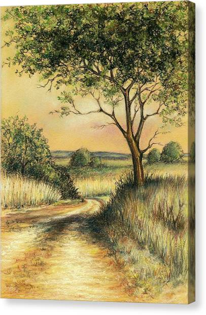 Bushveld Canvas Print
